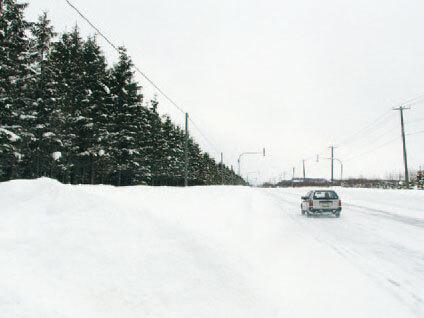 視線誘導樹で交通の安全を確保します-写真イメージ-写真イメージ