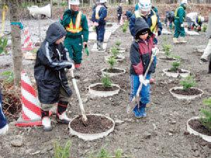 植樹会の実施-写真イメージ1